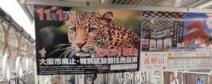 吊り広告4